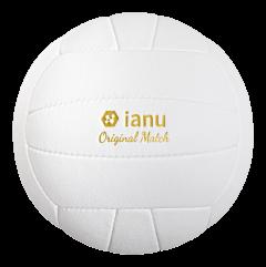 Volleyball_freigestellt